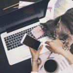 転職は非効率!?収入アップにオススメなダブルワークの始め方と便利ツールとは?